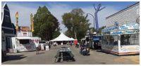 Tulip Festival Craft Fair