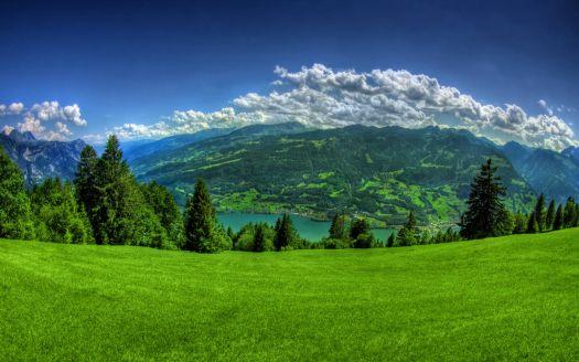 green_nature_1680x1050
