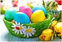 Pastel Easter Eggs with Daffodils