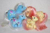 mlp - customs