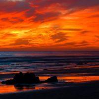 Nature's Sunset Palette