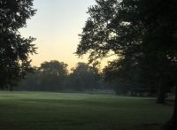Light Morning Mist at Tower Grove Park