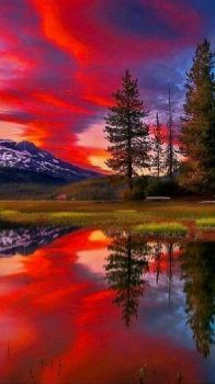 Another Amazing Sky and Reflection