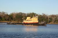 Tug boat on the Savannah river