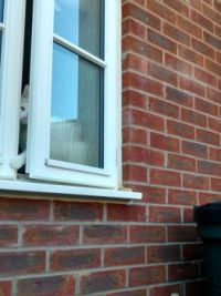 Lily the cat stories 014 - The Great Escape