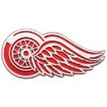 GO RED WINGS