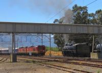 The Famous South African Blue Train Passing a heritage steam train