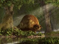 Prehistoric Glyptodon!