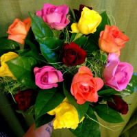 flowers_roses_queen_of_flowers_flower_pink_rose_pink_bouquet_nature-854392