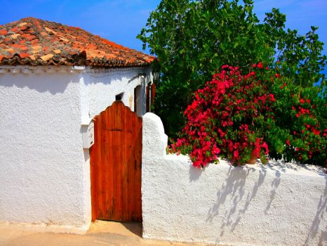 Facade-with-wooden-gate-and-wall-covered-with-red-bougainvillae