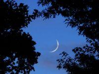 Toenail Moon