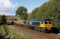 66705 Golden Jubilee.