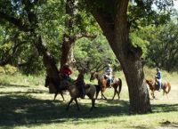 San Angelo State Park Trail Ride