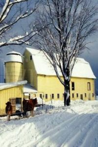 Themes: Barn In Winter