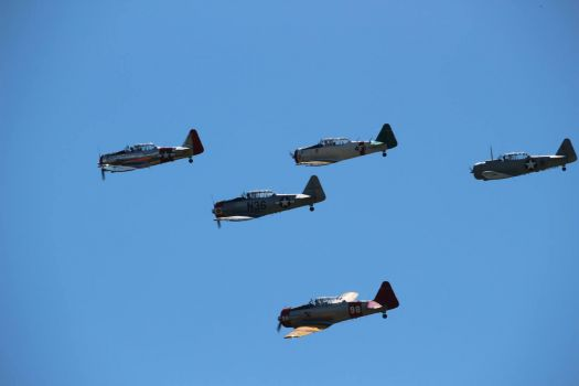 5 WWII Fighters