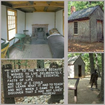 Theme~ Homes: Henry David Thoreau Shack: Medium