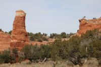 Hoodoos and Pinons in NW New Mexico