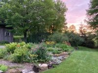 Garden at sunset