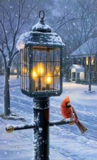 Warmth of Winter I