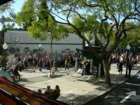 Madeira 2012 130