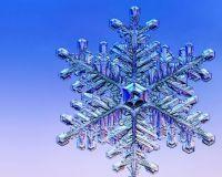 Winter_Flake