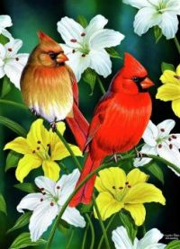 cardinal-day--cynthie-fisher