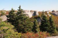 pollys cove trail, nova scotia 6
