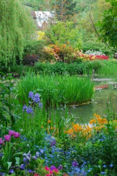 Another view of Monet's Garden Givency. France.