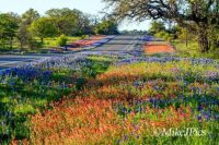Texas Hill Country   near Llano, Texas  Pics by Mike Jones