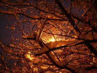 vzpomínka na zimu