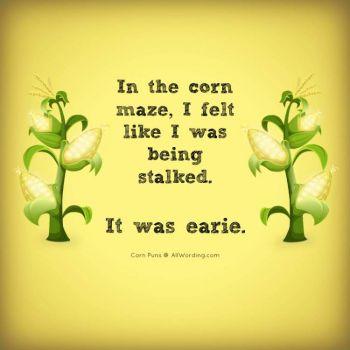 corn-puns-stalked