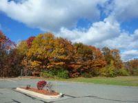 New England Foliage 2016