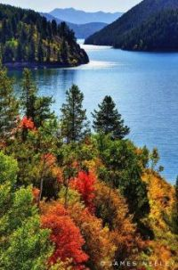 Fall Color is coming quickly along the nearly full Palisades Reservoir. Idaho. (2011)