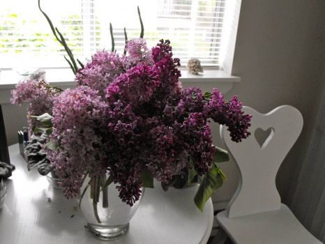 Ohhh the lilacs smell sooooo good!