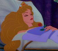 Dreaming of Disney 8