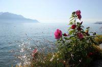 Montreux - Lac Leman (Suisse)