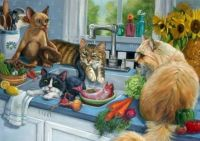 cats in the kitchen!!!!!