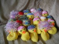 Charity Chick Knit