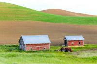 FARMING THE PALOUSE