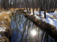 Winter along the creek