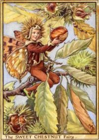The Sweet Chestnut Fairy (smaller size)