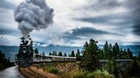 Steam Train