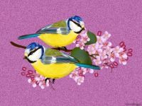PUZZLE - Two Birds On Lilacs