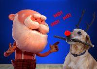 Merry Christmas Jigidi Friends