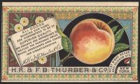 Themes Vintage ads - Thurber & Co.