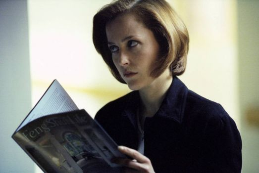Agent Scully Judges You.