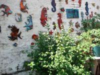 Mon jardin l'été :)
