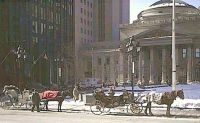 Horse-drawn carriages in Montreal