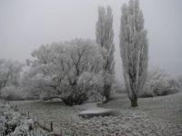Hoar Frost Oturehua NZ
