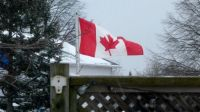 O Canada...Flying in the east wind